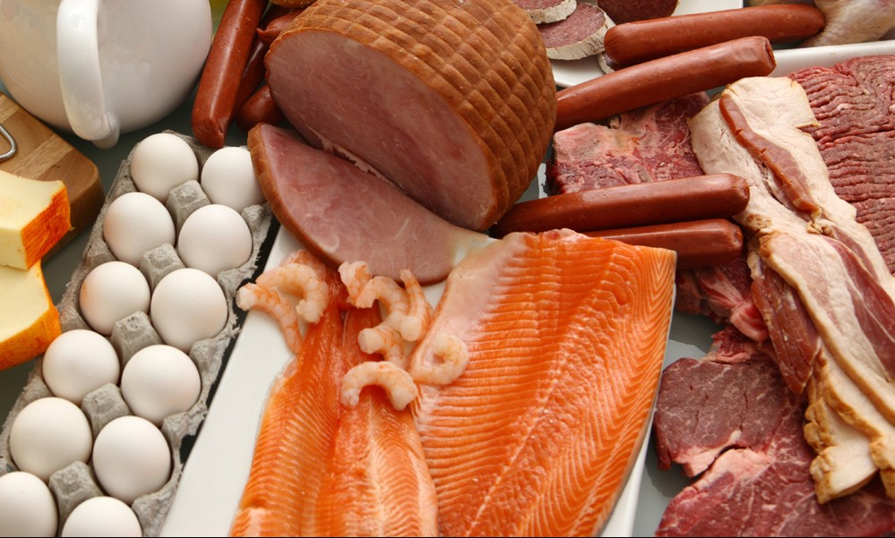 High-protein diet, lots of food